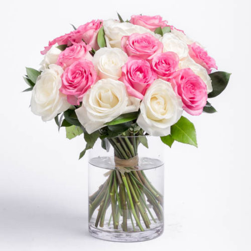 roses-pink-and-white